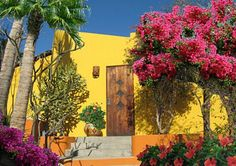 Lush, colorful foliage provides a perfect complement to Posada Chabela's tasteful accommodations and appointments.