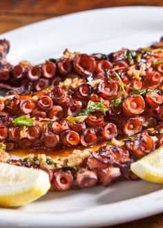 Polvo na manteiga e no vinho branco Octopus in Butter and White Wine More… – The World Special Recipes, Great Recipes, Seafood Recipes, Vegetarian Recipes, Octopus Recipes, My Favorite Food, Favorite Recipes, Good Food, Yummy Food