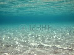 Underwater ripples of sunlight reflected on a sandy sea floor in clear shallow…