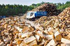 Palivové dřevo, palivové dříví, dřevo - takhle to ted vypada u nas pred zimou, bude cim topit:)