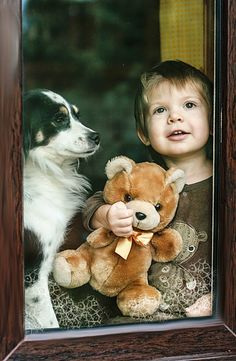 At The Window~Little boy waits with his dog and his Teddy Bear.