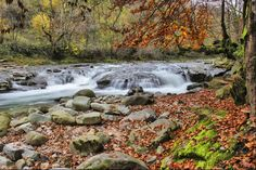 Photo listed in Landscape Shot taken with Canon EOS 5 shares, 11 likes and 549 views. Waterfall, Autumn, Landscape, Outdoor, Outdoors, Scenery, Fall Season, Waterfalls, Fall