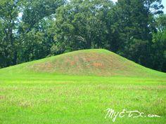 Caddo Indian Burial Mounds