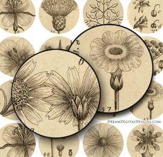 Botanical Digital Collage Sheet - 1 inch Circles - Printable Images