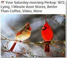 ☕ Your Saturday morning Perkup: 1872, Lying, 1 Minute Azon Stores, Better Than Coffee, Video, More