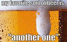 My favorite sort of beer - meme - http://jokideo.com/my-favorite-sort-of-beer-meme-1234/
