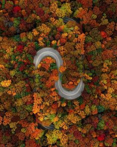 Fall colors in South Carolina Of The Day Autumn Photography, Drone Photography, Photography Tips, Colour Photography, Outdoor Photography, Lifestyle Photography, Travel Photography, Beautiful Roads, Beautiful Places