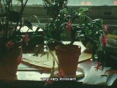 "lostinpersona: ""As I Was Moving Ahead Occasionally I Saw Brief Glimpses of Beauty, Jonas Mekas "" Mathilda Lando, Citations Film, I Am Moving, Film Quotes, Quote Aesthetic, Film Aesthetic, Film Stills, I Saw, Retro Vintage"