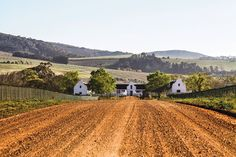 South Africa: a foodie road-trip in the Western Cape Europe Bucket List, Travel List, Africa Travel, New Wave, South Africa, Westerns, Road Trip, Around The Worlds, Country Roads