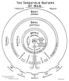 Threefold Humanity.  Recently we tend to boil down the human person into two parts - body/soul.  But the ancients saw three parts (as used in the Bible) - which is actually a much more functional and explanatory breakdown