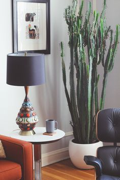 Room decoration using cactus is never ending. Starting from the real cactus, cactus displays, to the cactus made of stone. Methods, planting media, and pots used to plant cactus and important infor… Indoor Cactus Plants, Cactus House Plants, Home Interior, Interior And Exterior, Interior Design, Simple Interior, Grand Cactus, Tall Cactus, Cactus Cactus