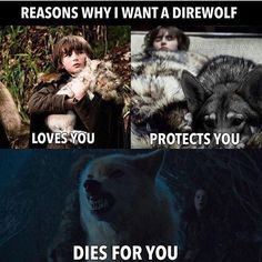 Reasons why I want a Direwolf, Game of Thrones.