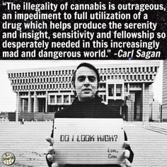 """Carl Sagan cannabis illegality quote """"The illegality of cannabis is outrageous, an impediment to full utilization of a drug which helps produce the serenity Weed Quotes, Weed Memes, Weed Facts, Marijuana Facts, Carl Sagan, Smoking Weed, Ganja, Medical Marijuana, Drugs"""