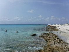 Shore Diving on Bonaire | by http://goinformed.net