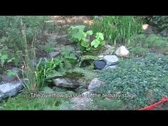 Home-built greywater treatment system