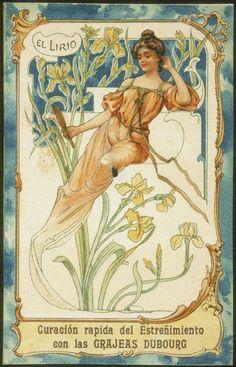 из набора открыток с цветами Grajeas de Hierro, ок. 1900 года - автор неизвестен