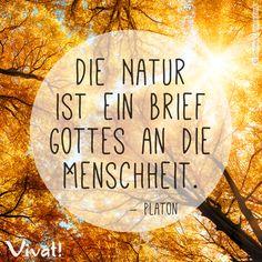 #Zitate und #Sprüche: »Die Natur ist ein brief Gottes an die Menschheit« – Platon