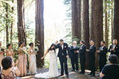 California Redwood F