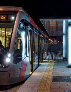 Zaragoza-Tranvía nocturno