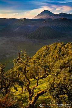 Bromo National Park, Java, Indonesia