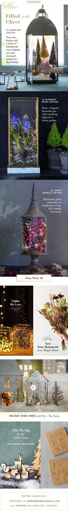 #Lanterns filled with cheer at #shopterrain November 11
