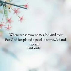 Whenever sorrow comes, be kind to it. For god has placed a pearl in sorrow's hand. - Rumi