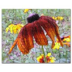 Painted Blanket Flower Puzzle