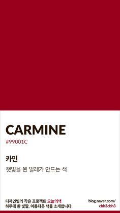[오늘의 빛: 오늘의 색] 카민 : 네이버 블로그 Flat Color Palette, Colour Pallette, Pantone Colour Palettes, Pantone Colours, Pintura Exterior, Red Color Schemes, Colour Board, Color Stories, Color Swatches