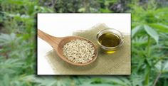 5 HEALTH BENEFITS OF HEMP SEED OIL Prejudice related to its association with cannabis has kept it from common use in the West