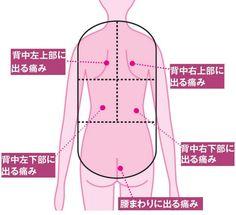 背中から腰にかけて、痛い、重い、だるい……。そんな症状が現れることもある。原因は内臓の病気かもしれない。お腹の中の仕組みと、症状別に原因と思われるものを紹介しよう。 「体の後ろ側の『後腹膜(こうふくまく)』という場所の臓器に…