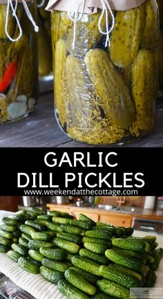 Making Dill Pickles, Garlic Dill Pickles, Sour Pickles, How To Make Pickles, Pickled Garlic, Homemade Pickles, Kosher Pickles, Crispy Dill Pickle Recipe, Bread N Butter Pickle Recipe