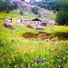 Le monal, Sainte-Foy-Tarentaise, France — by Jérémie Silva. One of the most beautifull village of the alps, le Monal is located in Tarentaise valley close to Sainte Foy, an...
