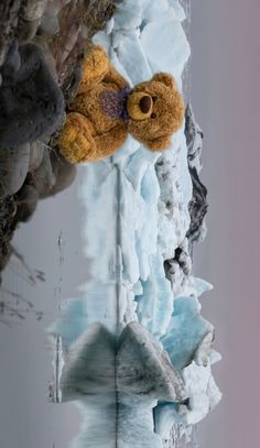 Teddy Bear Pictures, Love Bear, Photoshop Design, Teddy Bears, Animal Pictures, Abandoned, Wallpapers, Painting, Animals