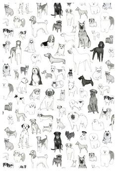 Dog Breed Pattern Print