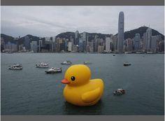 Dopo Londra, la mega papera arriva ad Hong Kong! SAVE THE DUCK conquista l'Oriente!!!