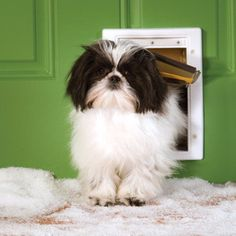 """Features: Flap Dimensions: 5 1/8"""" W x 7 5/8"""" H Frame Dimensions: 7 5/8"""" W x 11 1/8"""" H - For Pets Up to 15 pounds - 3-flap system offers protection from extreme heat, cold, drafts, insects, or driving"""