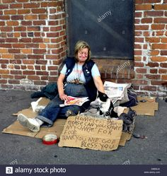 homeless women street   Homeless Woman And Cats With Sign Asking For Spare Change On Hyde ...