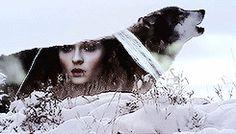 1k mine game of thrones Arya Stark Cersei Lannister Sansa Stark daenerys targaryen catelyn stark margaery tyrell Asha Greyjoy mine: got hmm idk gotedit shireen baratheon gotsansastark gotaryastark gotdaenerystargaryen at least this time ps didn't chrashed