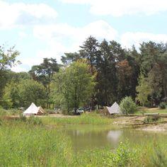 Landgoed Börkerheide - Bell-tenten in Drenthe | Bijzonderecamping.nl Go Camping, Campers, Netherlands, Culture, Holidays, World, House, Travel, Outdoor