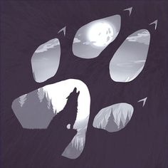 Image result for wolf paw drawing