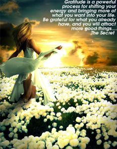 meditate on gratitude and   change your vibration