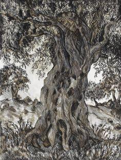 Encre de Chine, sanguine, pastels secs ou gras… autant de parements utilisés par Pascaline Bossu pour flatter l' olivier, arbre mythique de Méditerranée.