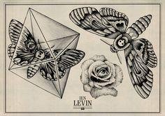IEN LEVIN moth