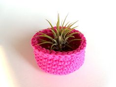 Crochet Air Plant Container Bowl in Hot Pink by Airy Obsessions on Etsy, $8.50