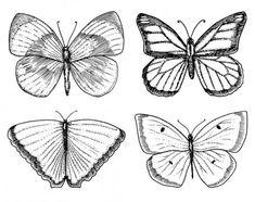 Diseño de tatuaje o boho camiseta o scrapbooking. Místico esotérico símbolo de libertad y viajes. mariposa o insecto boceto. colección entomológica. dibujado en viejo estilo sketch y vintage grabado a mano — Ilustración de stock Butterfly Tattoo Cover Up, Butterfly Tattoo On Shoulder, Butterfly Tattoos For Women, Butterfly Tattoo Designs, Side Tattoos, Cover Up Tattoos, Doodle, Boho, Arm Tats