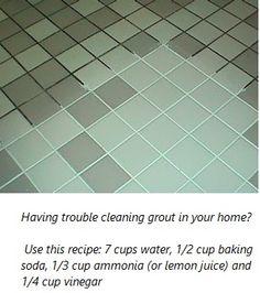 Household FloorGrout CleanerDIYPinterestHomemade