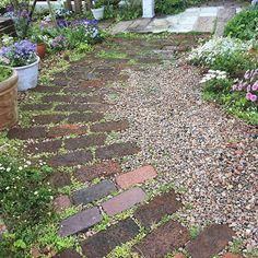 ❇︎ 今日の庭 ❇︎ レンガの隙間にマンネングサや雑草の緑が入ってナチュラルな感じになりました🌿🌿 ❇︎ #今日の庭#レンガの小道 #レンガ敷き#砂利敷き#マンネングサ#ガーデン#マイガーデン#ガーデニング#庭#手作り庭#春の庭#garden#mygarden #gardening#springgarden#flowers#flowerlovers#springflowers Brick Garden, Garden Paths, House Landscape, Landscape Design, Small Gardens, Outdoor Gardens, Stepping Stone Walkways, Small Yard Landscaping, Zen Garden Design
