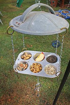 bird feeding station with a muffin pan and garbage can lid... cool!
