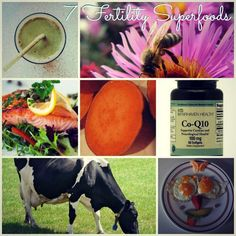 7 fertility superfoods you'll want to check out.  | Fit Bottomed Mamas