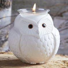#Precious pairing of Mama Owl and her little one. #Nature's Love™ by PartyLite…